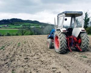 Noua grilă de impozitare a veniturilor agricole