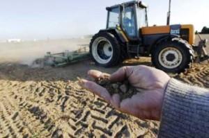 Seceta dăunează grav culturilor