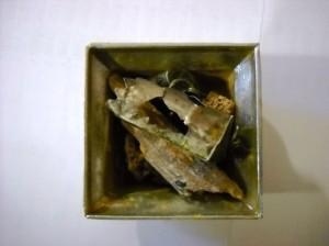 Moaștele Sfintei Parascheva de la Iași au fost descoperite în Catedrala din Roman