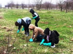 Voluntari apreciați de primar, dar fără respect din partea romașcanilor