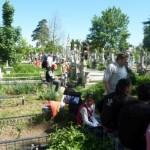 cimitir 11058