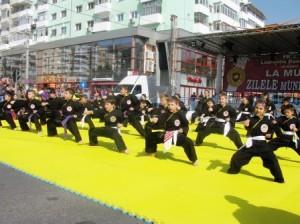 """Cros și spectacol de arte marțiale la """"Zilele Romanului"""""""