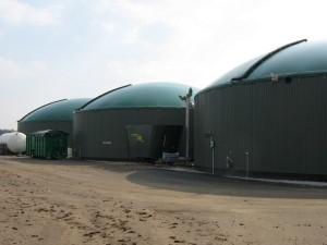 Producătorii de biogaz invită locuitorii din Cordun în Germania