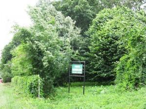 Parcul dendrologic din Văleni