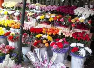 Vânzări mai slabe de flori, față de alți ani