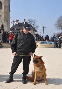 """Persoane găsite şi infractori prinşi de un """"polițist"""" cu lesă"""