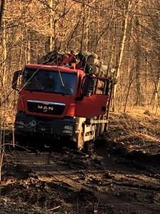 Ziarul de Roman se implică în campania de luptă împotriva tăierii pădurilor
